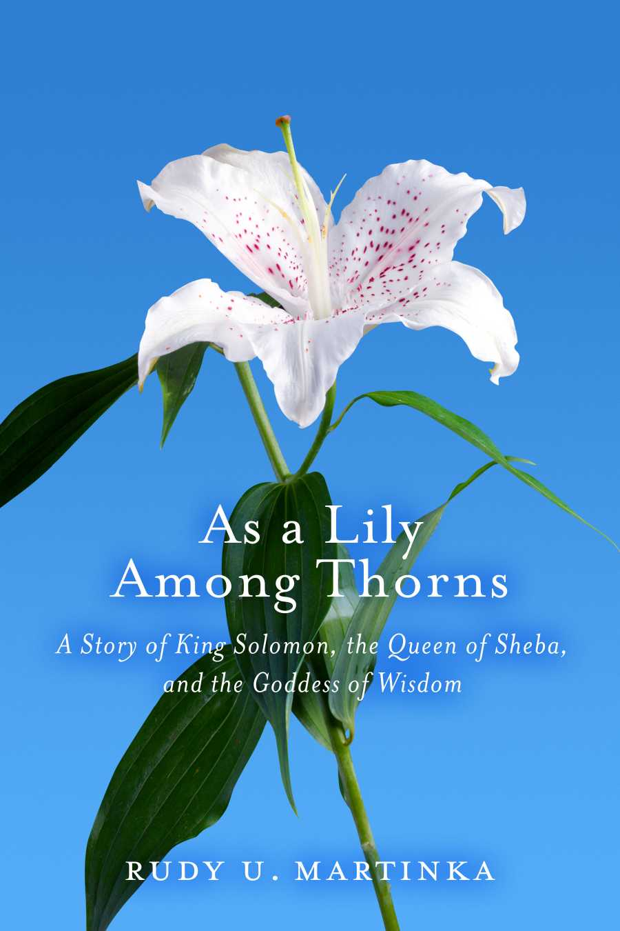 King solomon queen of sheba lily among thorns ud rudy u martinka what happened during her visit t to king solomon and solomon did everything that she asked izmirmasajfo