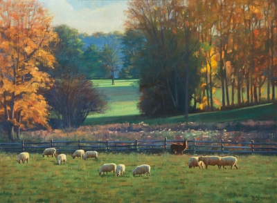 grazing-sheep