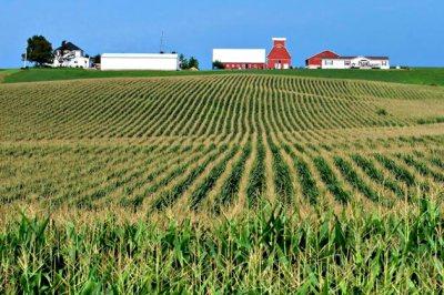 1211-iowa-farmland-630x420